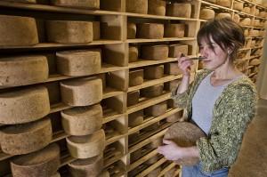 producteur fromage Hasparren